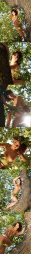 PureBeautyMag_PBM__-_2005-06-25_-_#s86490_-_Jitka_Branich_-_Missy_-_2560px.zip-jk- PureBeautyMag PBM  - 2005-06-27 - #s88382 - Jitka Branich - Forest Faerie - 2560px
